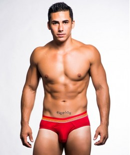California Dreaming Brief - Red